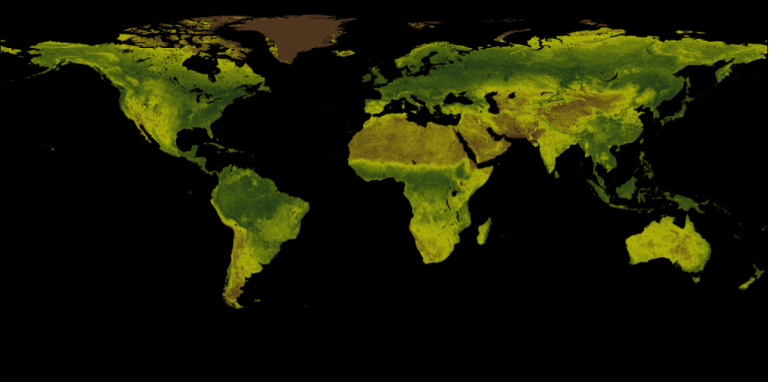 What is NDVI (Normalized Difference Vegetation Index)?