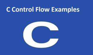 C Control Flow Examples