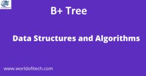 B+ Tree